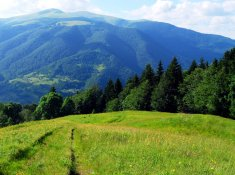 Тур на Закарпатье и Карпаты из Днепра 2020